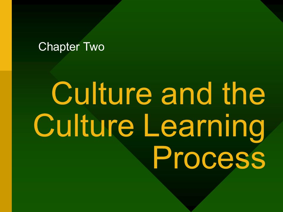 Culture and the Culture Learning Process Chapter Two