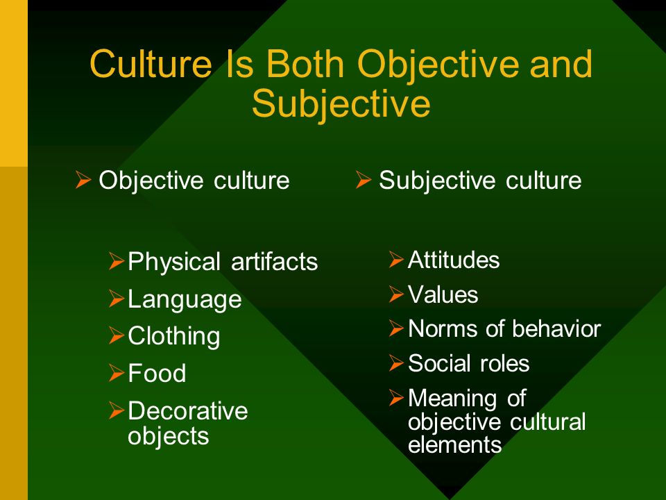 Culture Is Both Objective and Subjective Objective culture Physical artifacts Language Clothing Food Decorative objects Subjective culture Attitudes V