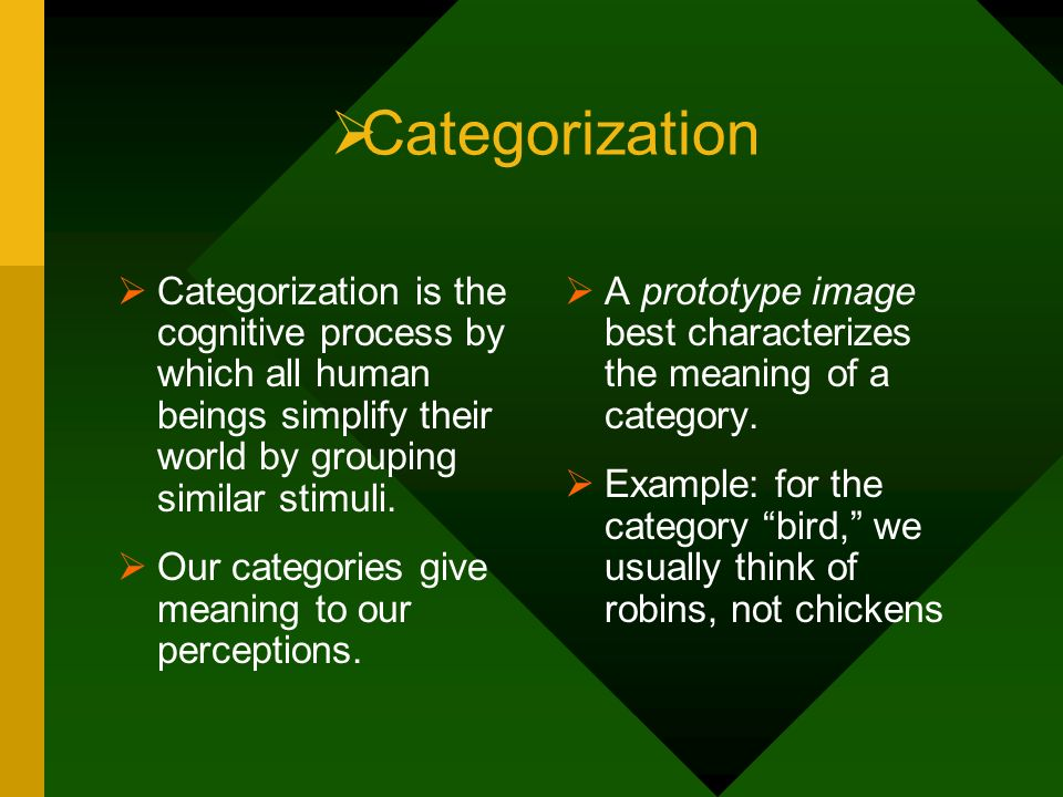 Categorization Categorization is the cognitive process by which all human beings simplify their world by grouping similar stimuli. Our categories give