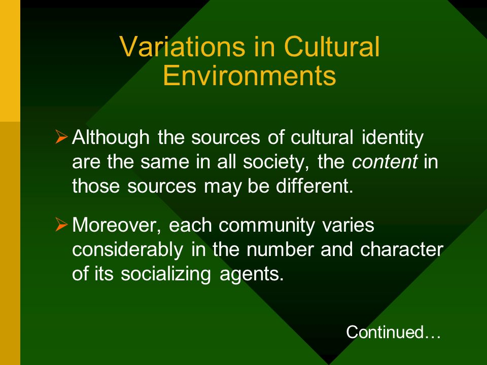Variations in Cultural Environments Although the sources of cultural identity are the same in all society, the content in those sources may be differe