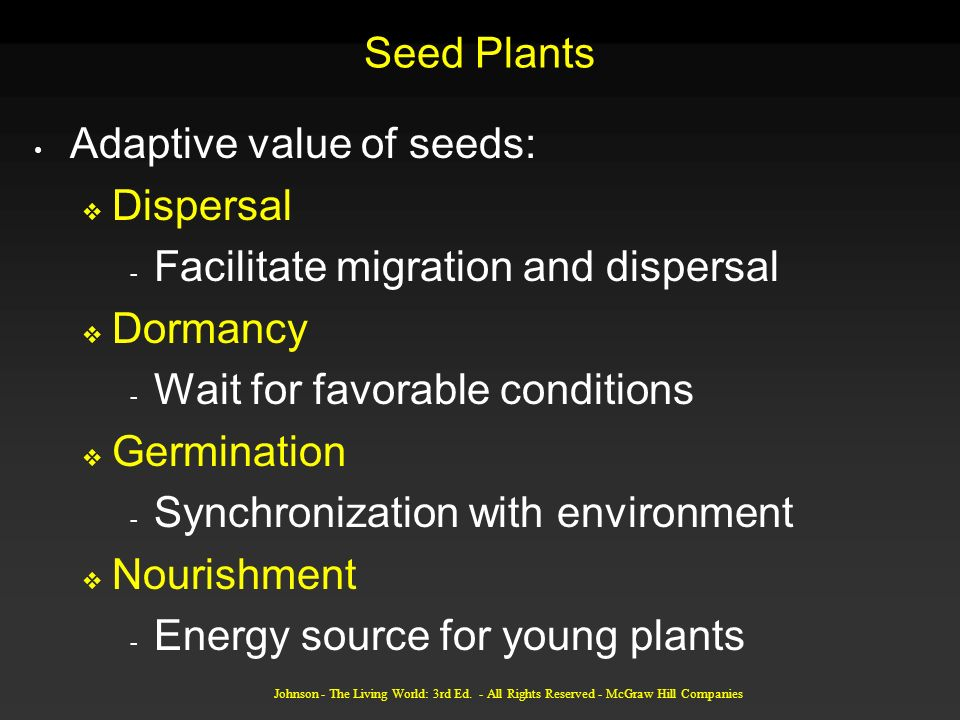 Johnson - The Living World: 3rd Ed. - All Rights Reserved - McGraw Hill Companies Seed Plants Adaptive value of seeds: Dispersal - Facilitate migratio