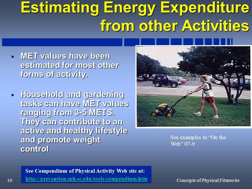 10Concepts of Physical Fitness 6e Estimating Energy Expenditure from other Activities MET values have been estimated for most other forms of activity.