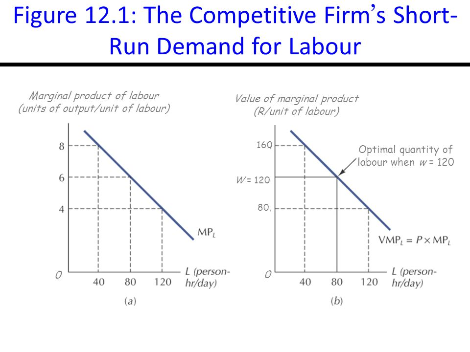 14-5 Figure 12.1: The Competitive Firm s Short- Run Demand for Labour 0 0 Value of marginal product (R/unit of labour) Marginal product of labour (units of output/unit of labour) Optimal quantity of labour when w = W =