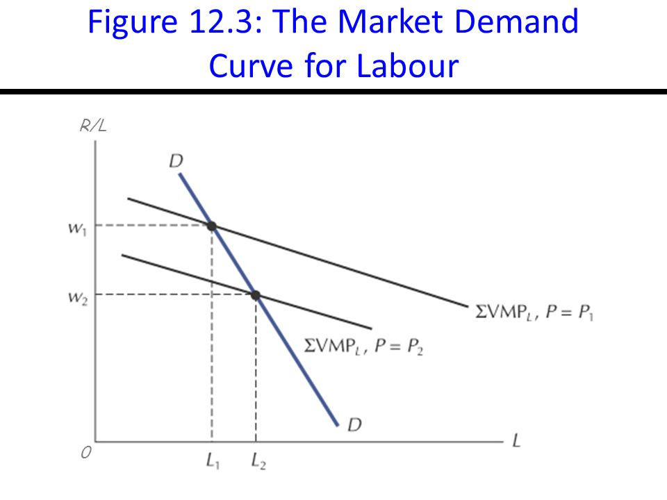 14-8 Figure 12.3: The Market Demand Curve for Labour 0 R/L