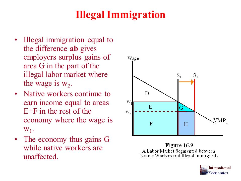Illegal Immigration Illegal immigration equal to the difference ab gives employers surplus gains of area G in the part of the illegal labor market where the wage is w 2.