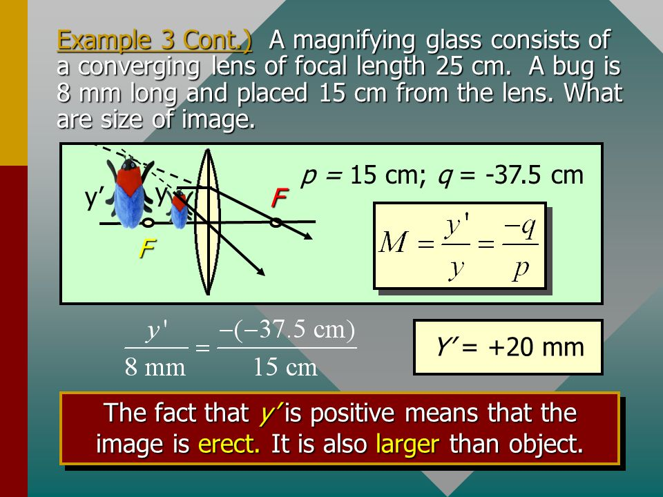 Example 3. A magnifying glass consists of a converging lens of focal length 25 cm. A bug is 8 mm long and placed 15 cm from the lens. What are the nat