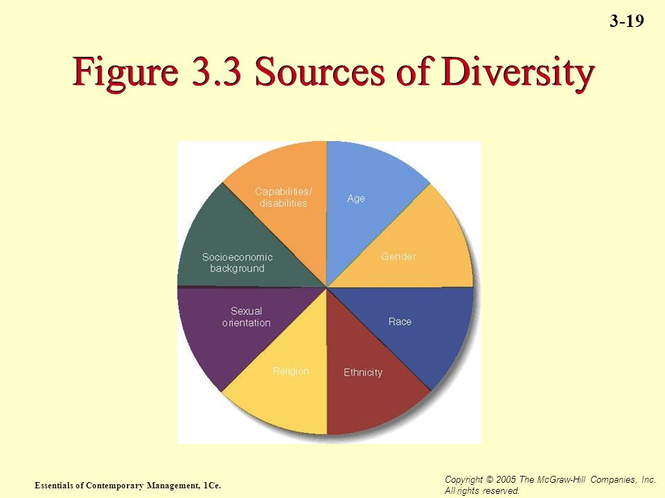 Essentials of Contemporary Management, 1Ce. Copyright © 2005 The McGraw-Hill Companies, Inc. All rights reserved. 3-19 Figure 3.3 Sources of Diversity