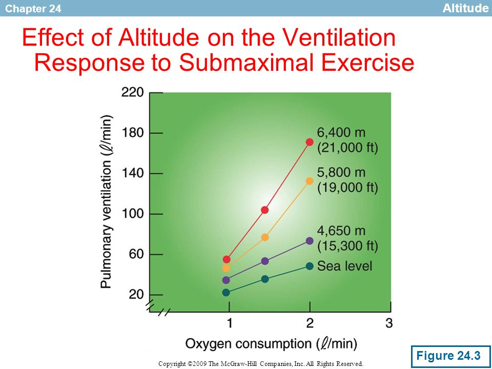 Chapter 24 Copyright ©2009 The McGraw-Hill Companies, Inc. All Rights Reserved. Effect of Altitude on the Ventilation Response to Submaximal Exercise
