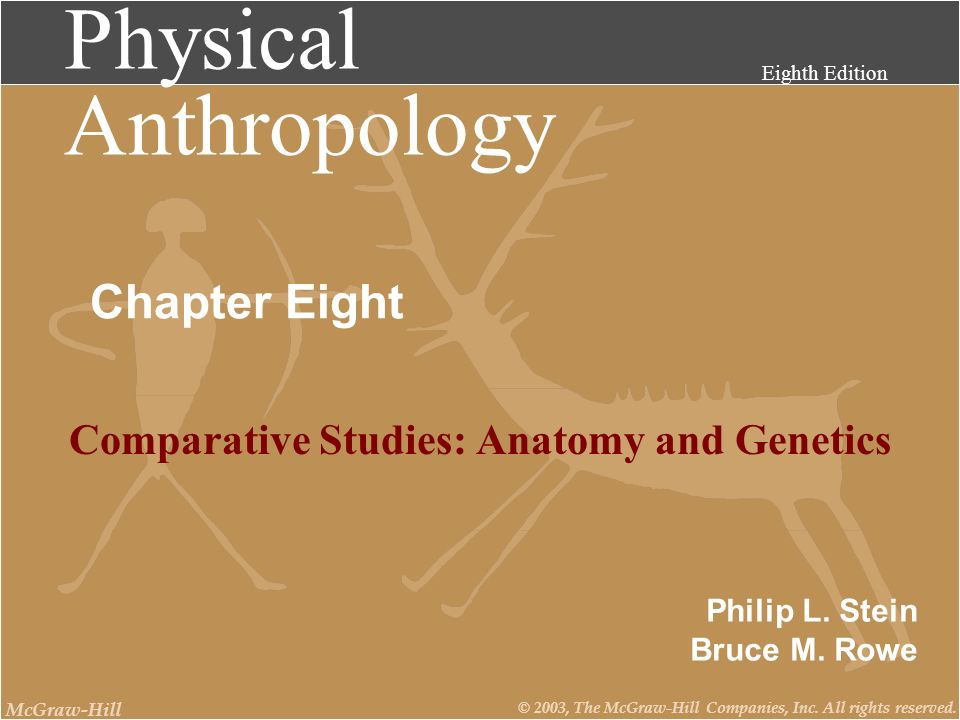 Physical Anthropology Eighth Edition Philip L. Stein Bruce M. Rowe McGraw-Hill © 2003, The McGraw-Hill Companies, Inc. All rights reserved. Chapter Ei