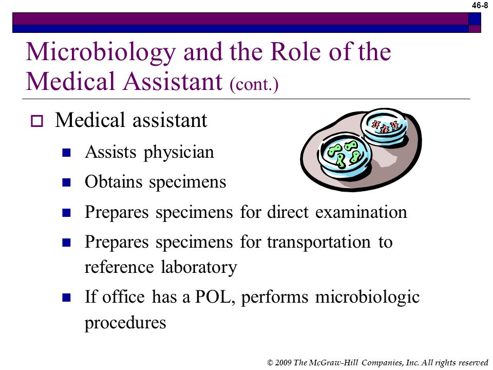 46-7 © 2009 The McGraw-Hill Companies, Inc. All rights reserved Microbiology and the Role of the Medical Assistant Microbiology – study of microorgani