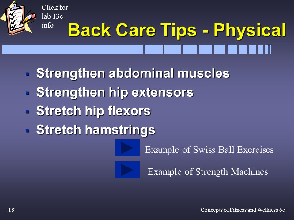 18Concepts of Fitness and Wellness 6e Back Care Tips - Physical Strengthen abdominal muscles Strengthen abdominal muscles Strengthen hip extensors Strengthen hip extensors Stretch hip flexors Stretch hip flexors Stretch hamstrings Stretch hamstrings Click for lab 13c info Example of Swiss Ball Exercises Example of Strength Machines