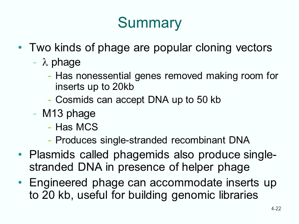 4-22 Summary Two kinds of phage are popular cloning vectors phage Has nonessential genes removed making room for inserts up to 20kb -Cosmids can accep
