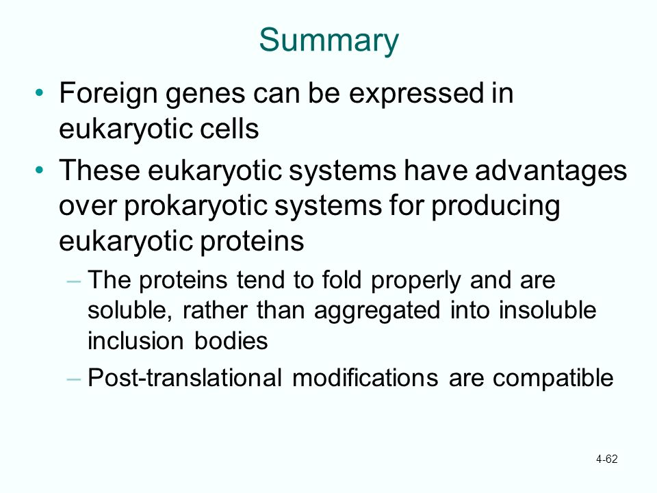 4-62 Summary Foreign genes can be expressed in eukaryotic cells These eukaryotic systems have advantages over prokaryotic systems for producing eukary