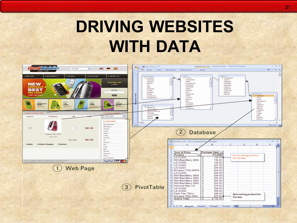 31 DRIVING WEBSITES WITH DATA