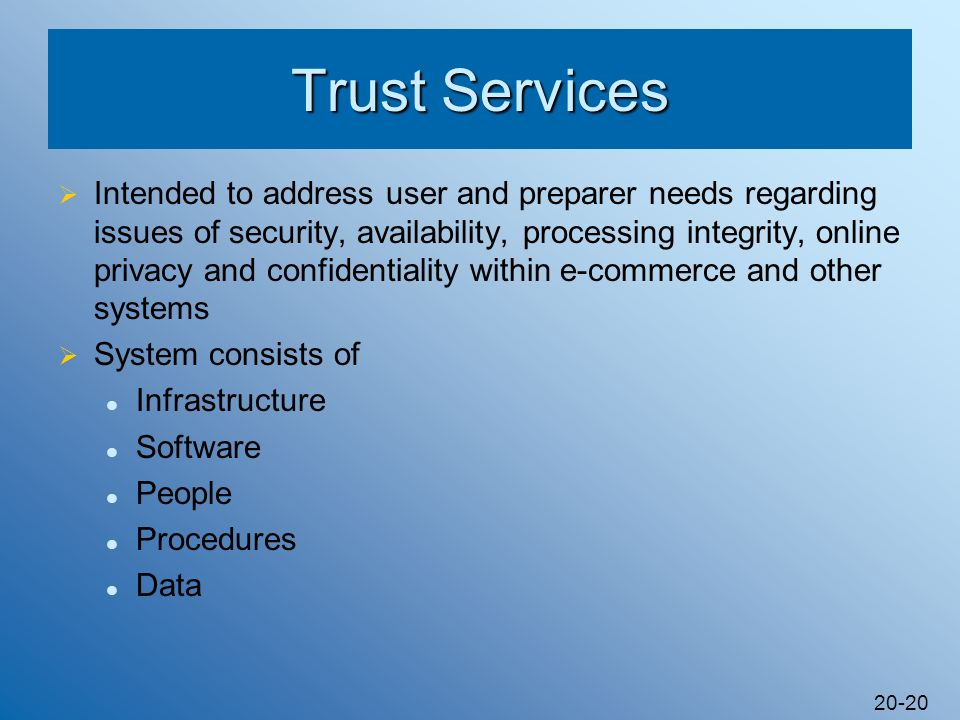 20-20 Trust Services Intended to address user and preparer needs regarding issues of security, availability, processing integrity, online privacy and