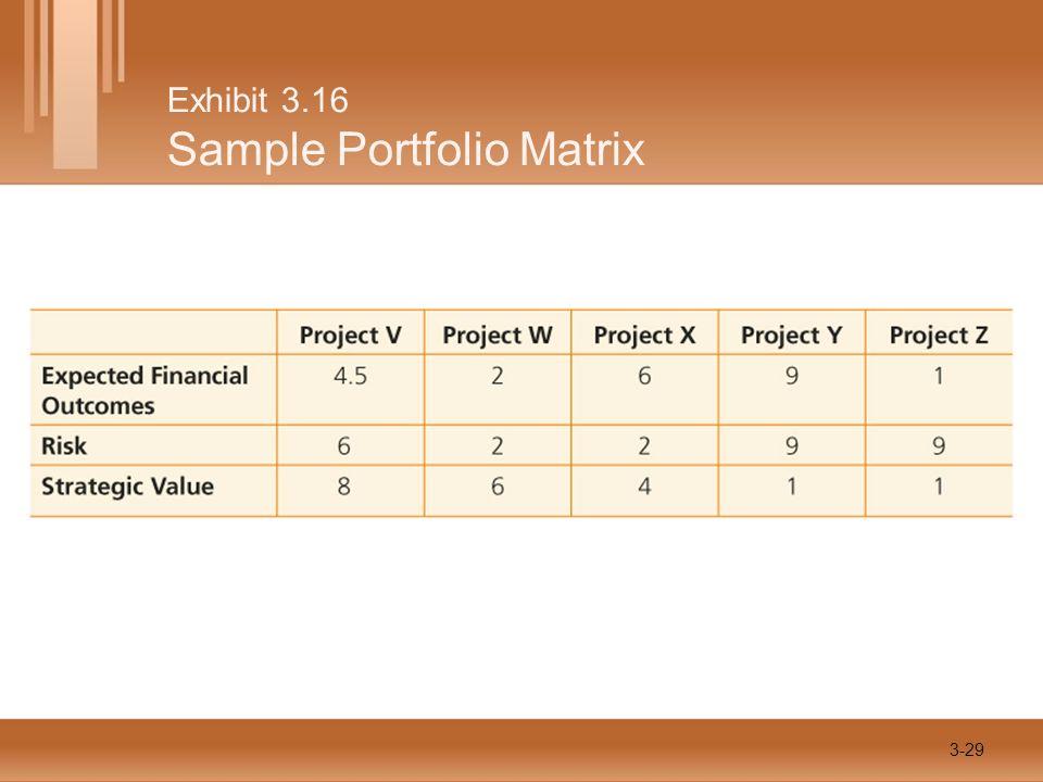 Exhibit 3.16 Sample Portfolio Matrix 3-29