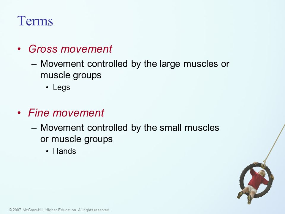 © 2007 McGraw-Hill Higher Education. All rights reserved. Terms Gross movement –Movement controlled by the large muscles or muscle groups Legs Fine mo