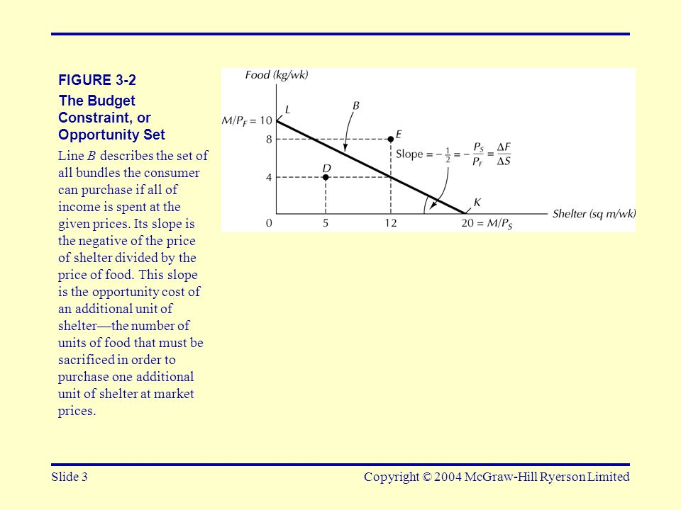 Slide 3Copyright © 2004 McGraw-Hill Ryerson Limited FIGURE 3-2 The Budget Constraint, or Opportunity Set Line B describes the set of all bundles the c
