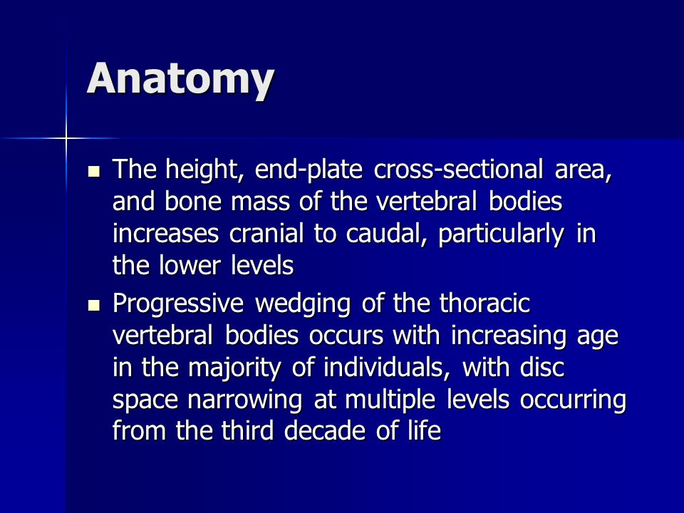 Anatomy The height, end-plate cross-sectional area, and bone mass of the vertebral bodies increases cranial to caudal, particularly in the lower level