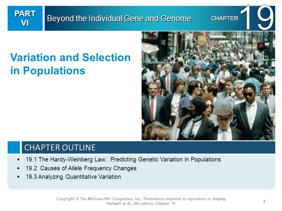 Three subfields of genetics based on the unit object that is the focus of study Molecular genetics – the unit entity is the gene Formal genetics – the unit entity is the individual organism, defined by genotype Population genetics – the unit entity is a population of interbreeding individuals Copyright © The McGraw-Hill Companies, Inc.