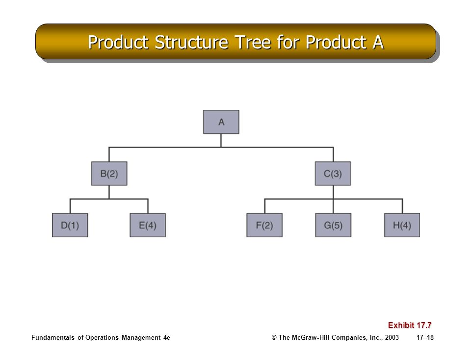 Fundamentals of Operations Management 4e© The McGraw-Hill Companies, Inc., 200317–18 Product Structure Tree for Product A Exhibit 17.7