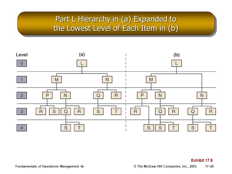 Fundamentals of Operations Management 4e© The McGraw-Hill Companies, Inc., 200317–20 Part L Hierarchy in (a) Expanded to the Lowest Level of Each Item