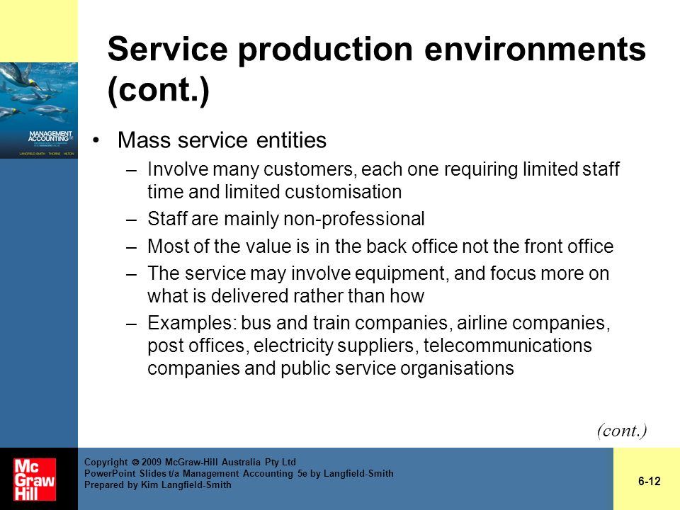 Service production environments (cont.) Mass service entities –Involve many customers, each one requiring limited staff time and limited customisation