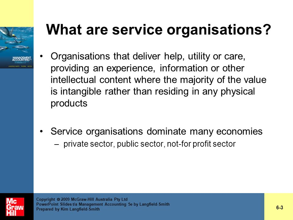 What are service organisations? Organisations that deliver help, utility or care, providing an experience, information or other intellectual content w
