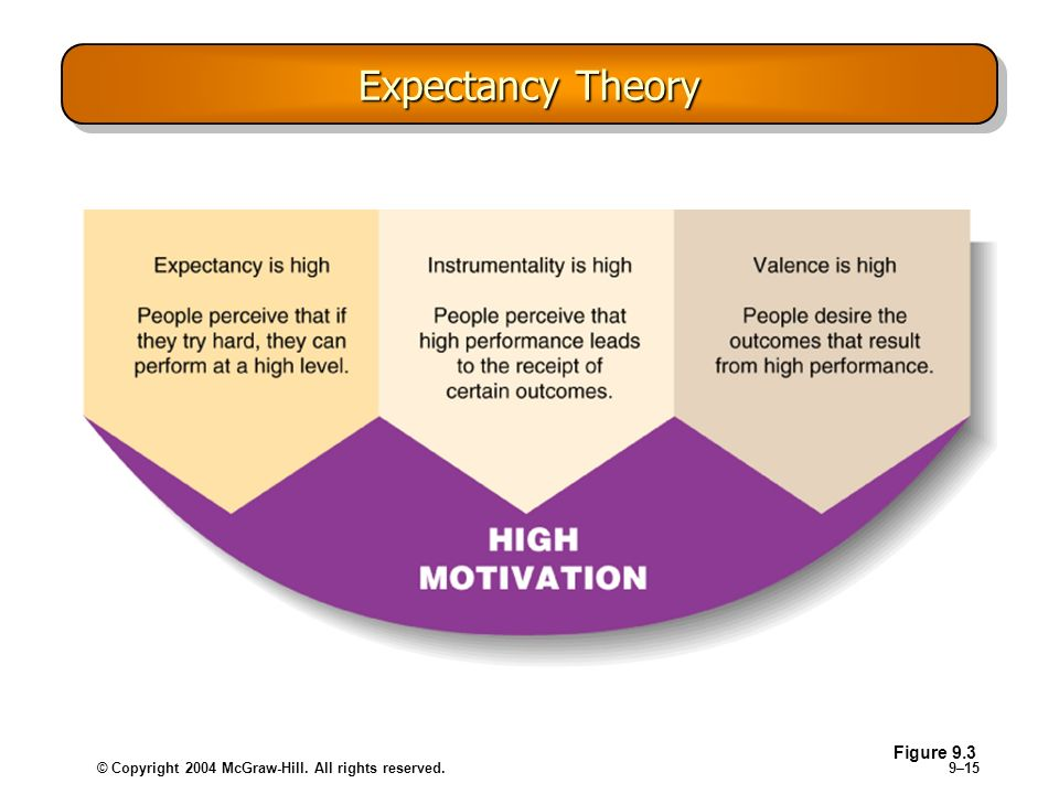 © Copyright 2004 McGraw-Hill. All rights reserved.9–15 Expectancy Theory Figure 9.3