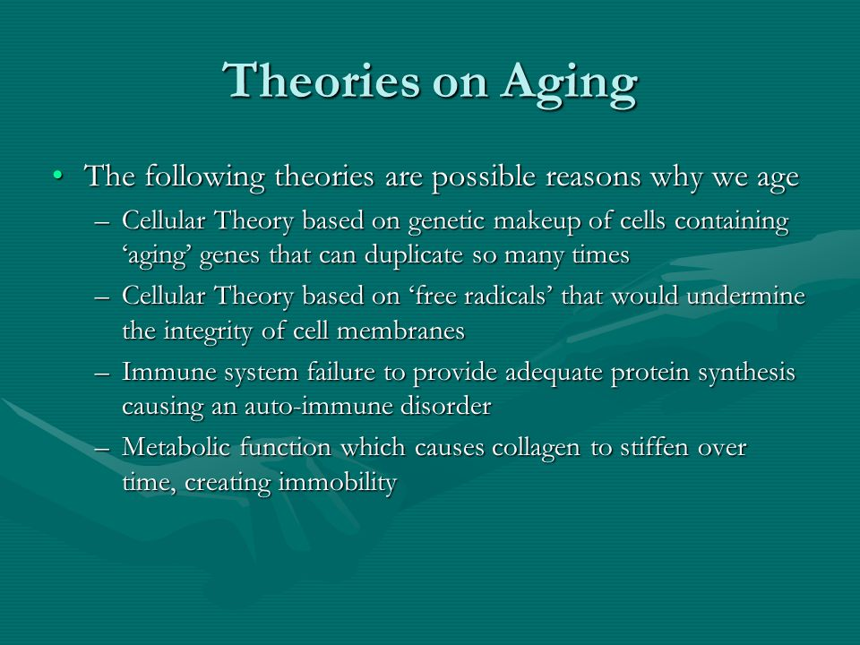 Theories on Aging The following theories are possible reasons why we ageThe following theories are possible reasons why we age –Cellular Theory based on genetic makeup of cells containing aging genes that can duplicate so many times –Cellular Theory based on free radicals that would undermine the integrity of cell membranes –Immune system failure to provide adequate protein synthesis causing an auto-immune disorder –Metabolic function which causes collagen to stiffen over time, creating immobility
