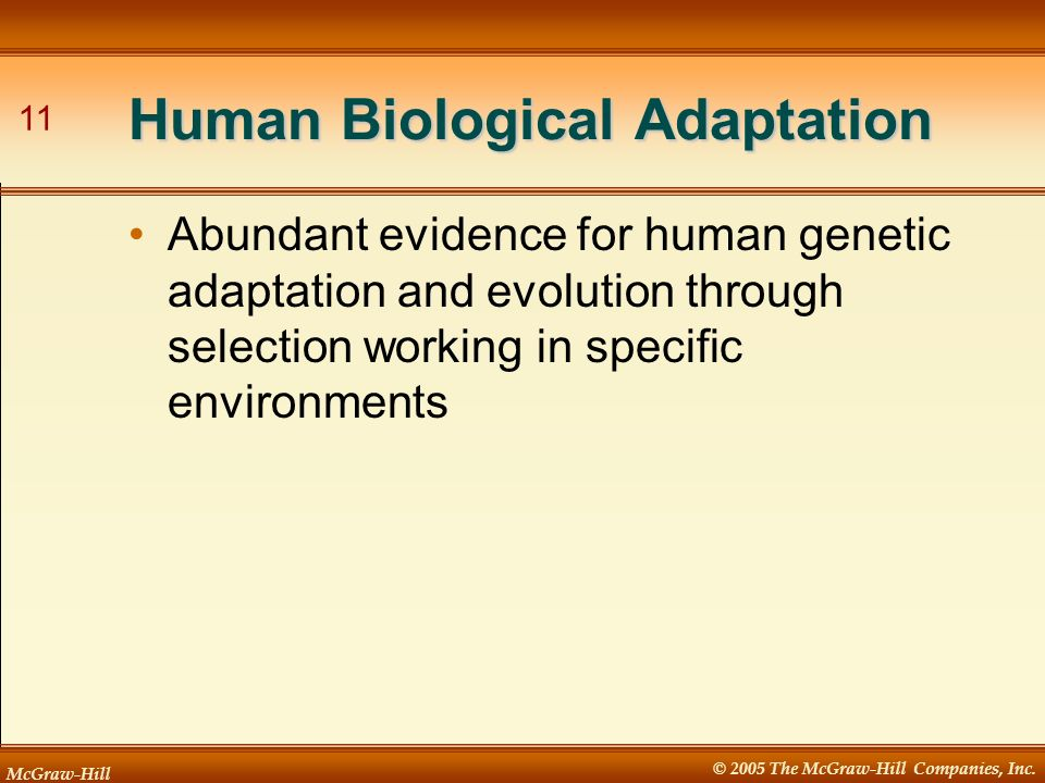 McGraw-Hill © 2005 The McGraw-Hill Companies, Inc. 11 Human Biological Adaptation Abundant evidence for human genetic adaptation and evolution through
