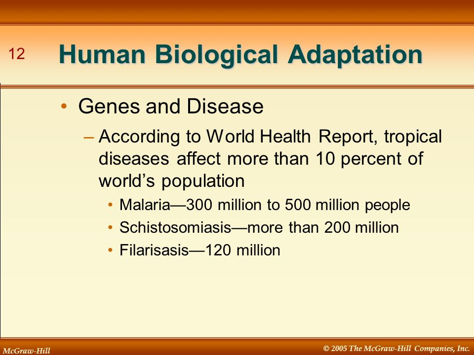 McGraw-Hill © 2005 The McGraw-Hill Companies, Inc. 12 Human Biological Adaptation –According to World Health Report, tropical diseases affect more tha