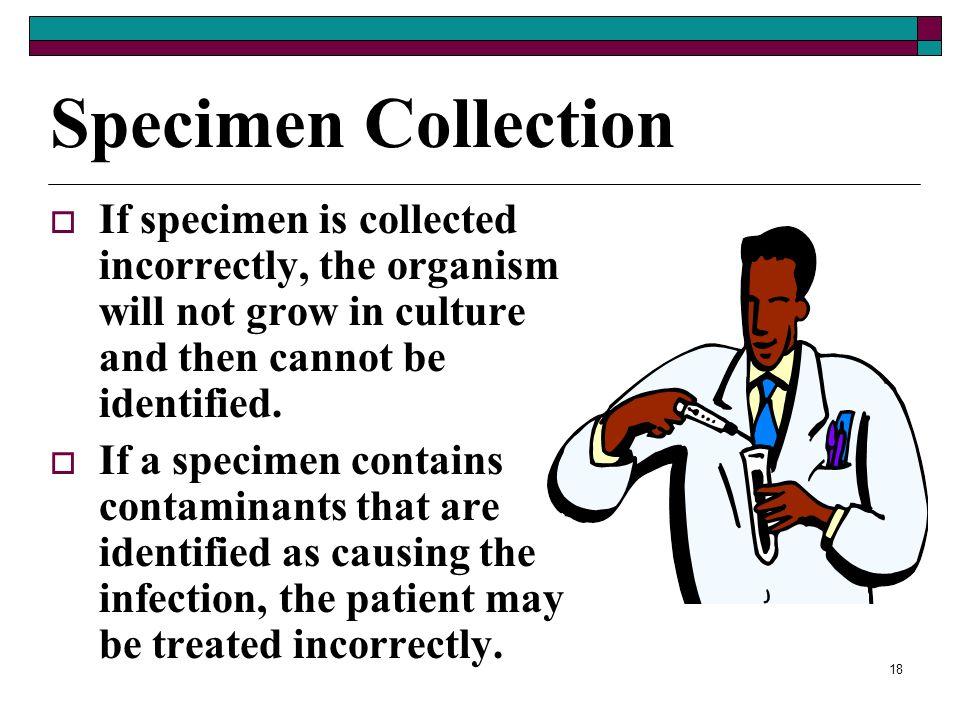 17 Diagnosing Infections Step 1 – Examine the patients signs and symptoms Step 2 – Obtain Specimens Step 3 – Examine the Specimens Directly Step 4 – C