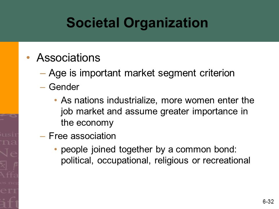 6-32 Societal Organization Associations –Age is important market segment criterion –Gender As nations industrialize, more women enter the job market a
