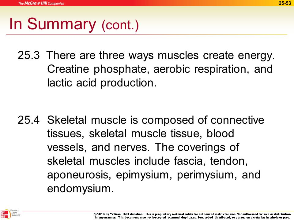 25-52 In Summary 25.1The functions of muscles include movement, stability, control of body openings and passages, and the production of heat.