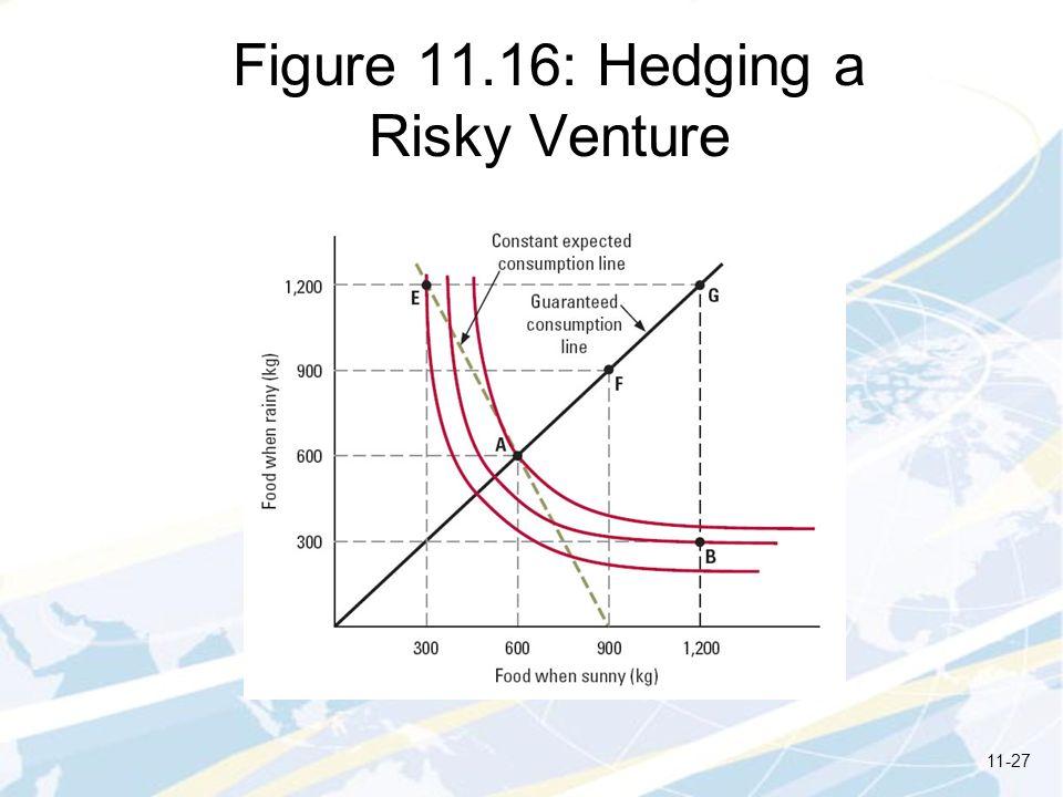 Figure 11.16: Hedging a Risky Venture 11-27