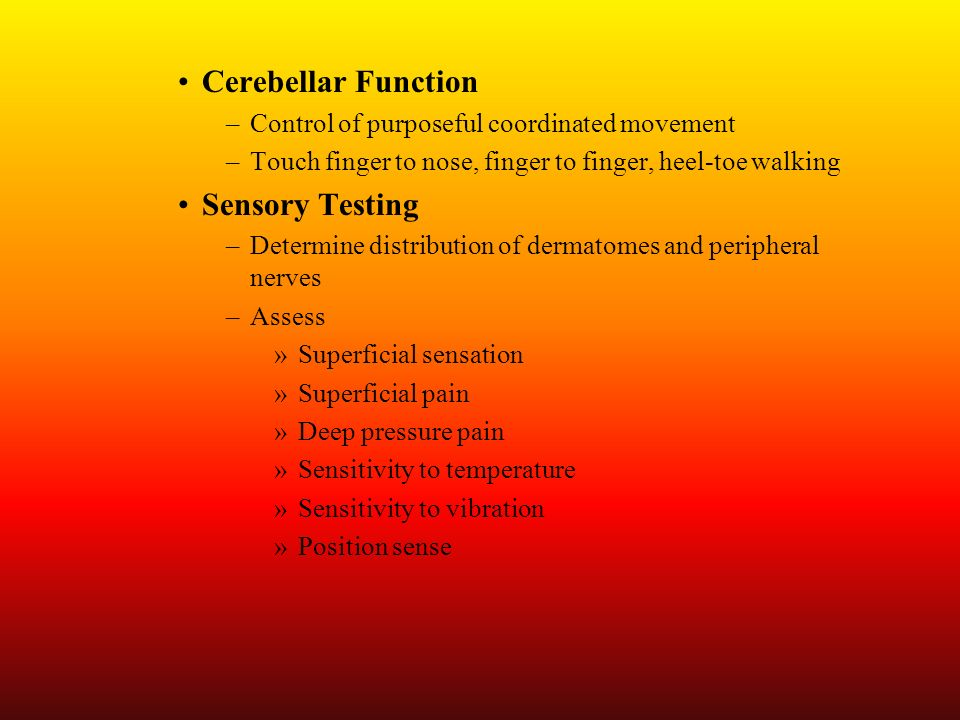 Cerebellar Function –Control of purposeful coordinated movement –Touch finger to nose, finger to finger, heel-toe walking Sensory Testing –Determine d