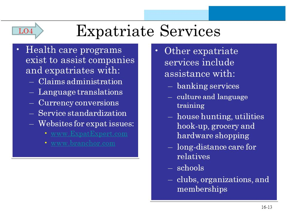 Expatriate Services Health care programs exist to assist companies and expatriates with: –Claims administration –Language translations –Currency conve