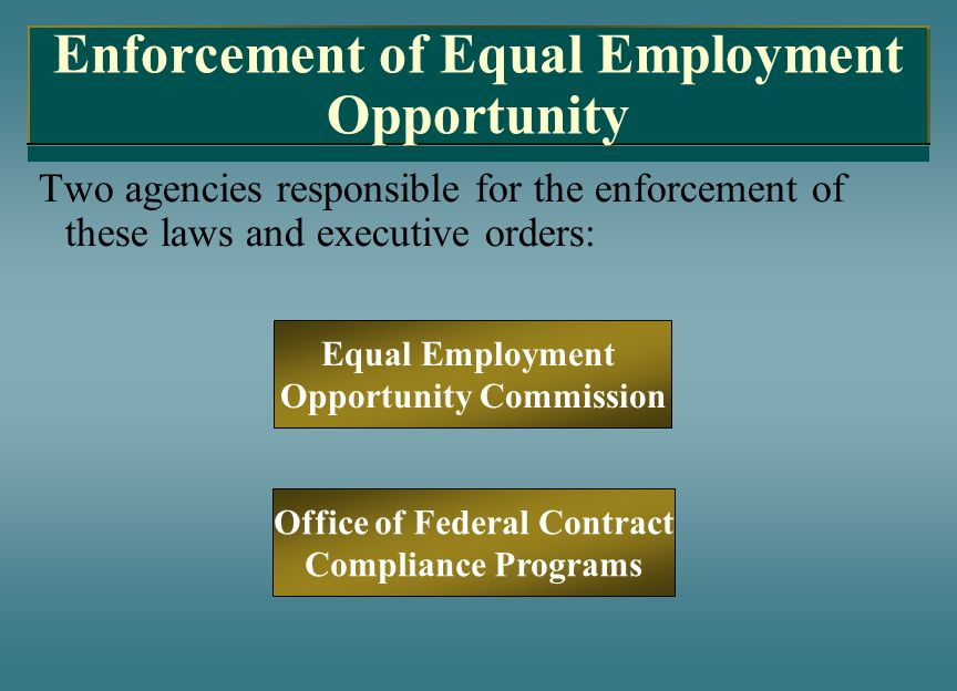Enforcement of Equal Employment Opportunity Two agencies responsible for the enforcement of these laws and executive orders: Equal Employment Opportun