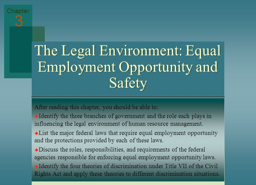 The Legal Environment: Equal Employment Opportunity and Safety After reading this chapter, you should be able to: Identify the three branches of gover
