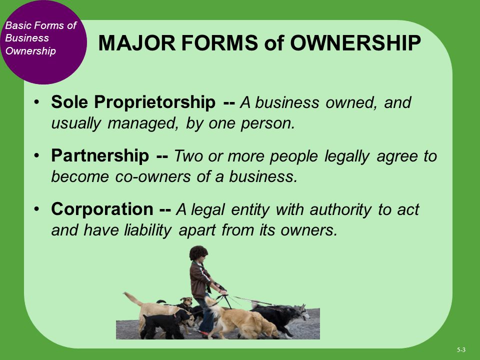 Basic Forms of Business Ownership Sole Proprietorship -- A business owned, and usually managed, by one person.