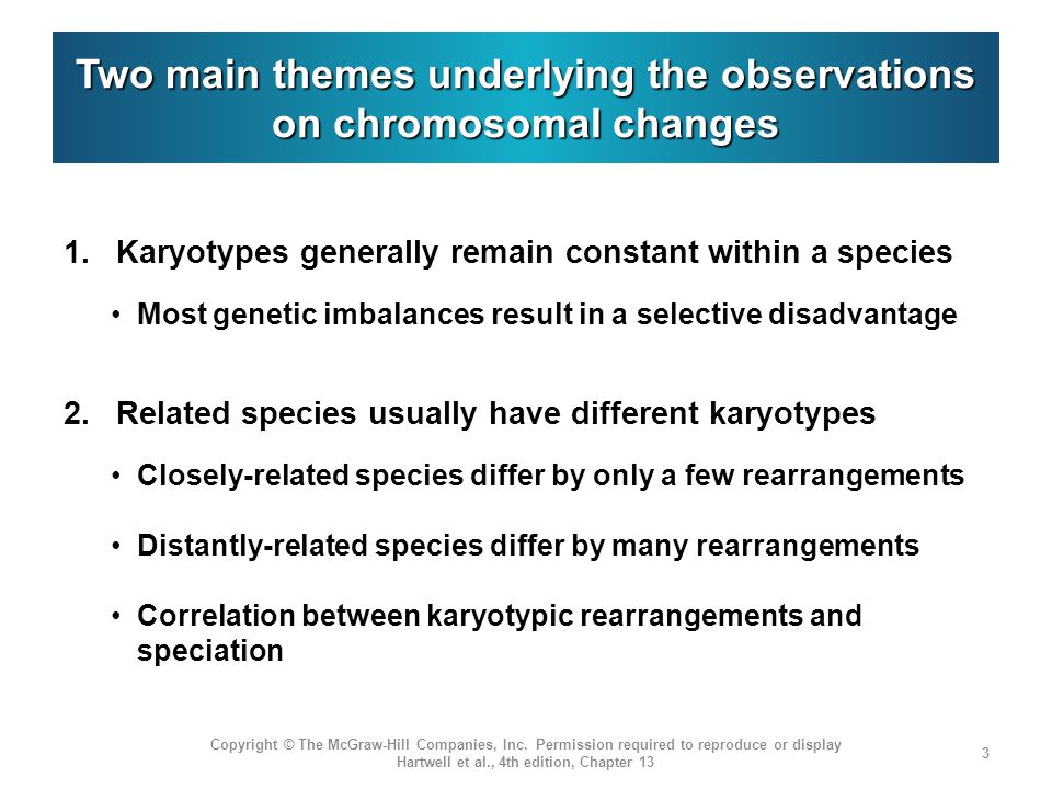 Two main themes underlying the observations on chromosomal changes 1.
