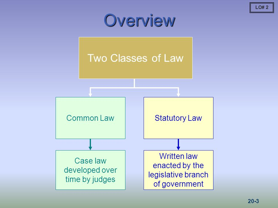 Overview Two Classes of Law Common Law Case law developed over time by judges Statutory Law Written law enacted by the legislative branch of government LO# 2 20-3