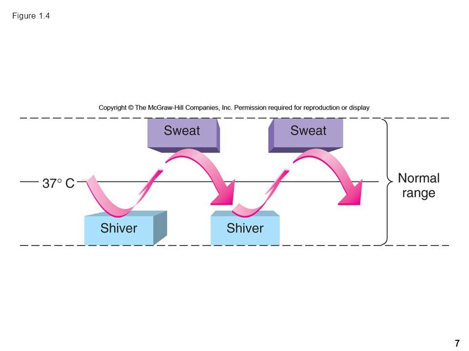 7 Figure 1.4