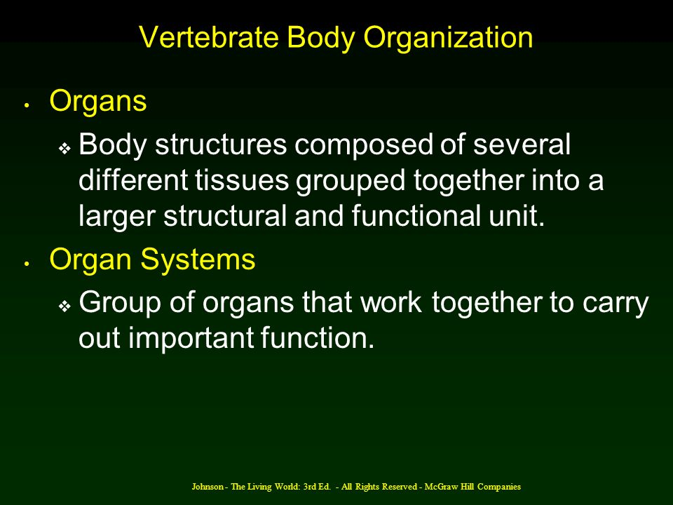 Johnson - The Living World: 3rd Ed. - All Rights Reserved - McGraw Hill Companies Vertebrate Body Organization Organs Body structures composed of seve