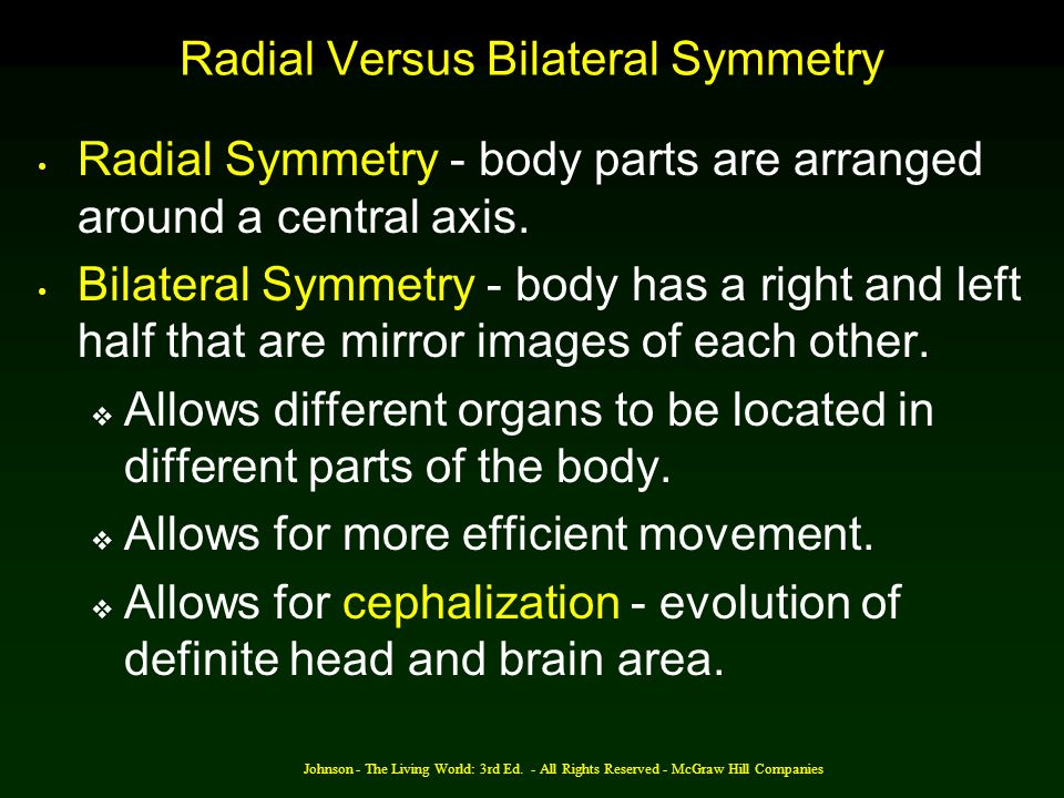 Johnson - The Living World: 3rd Ed. - All Rights Reserved - McGraw Hill Companies Radial Versus Bilateral Symmetry Radial Symmetry - body parts are ar