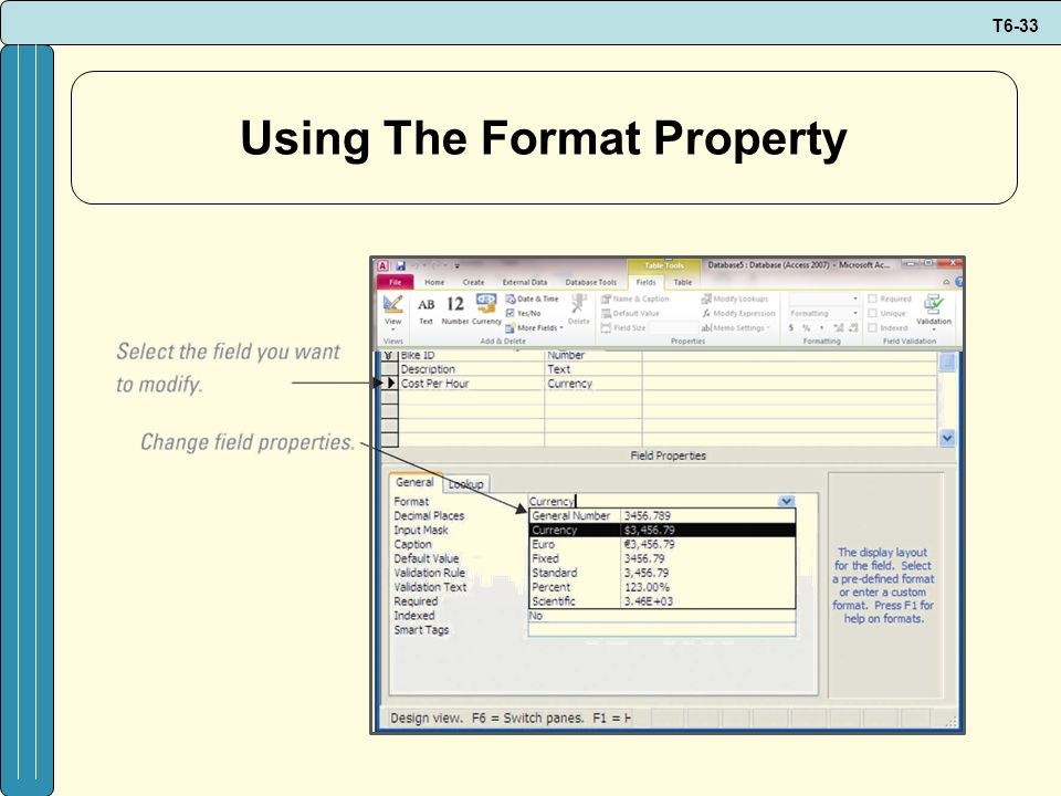 T6-33 Using The Format Property