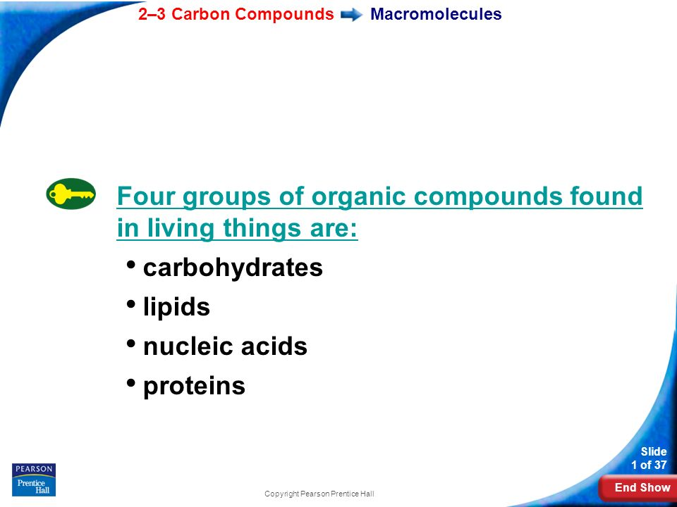 End Show 2–3 Carbon Compounds Slide 1 of 37 Copyright Pearson Prentice Hall Macromolecules Four groups of organic compounds found in living things are