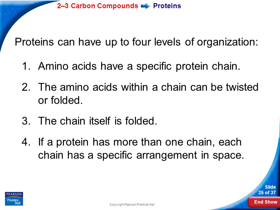 End Show 2–3 Carbon Compounds Slide 25 of 37 Copyright Pearson Prentice Hall Proteins Proteins can have up to four levels of organization: 1.Amino aci
