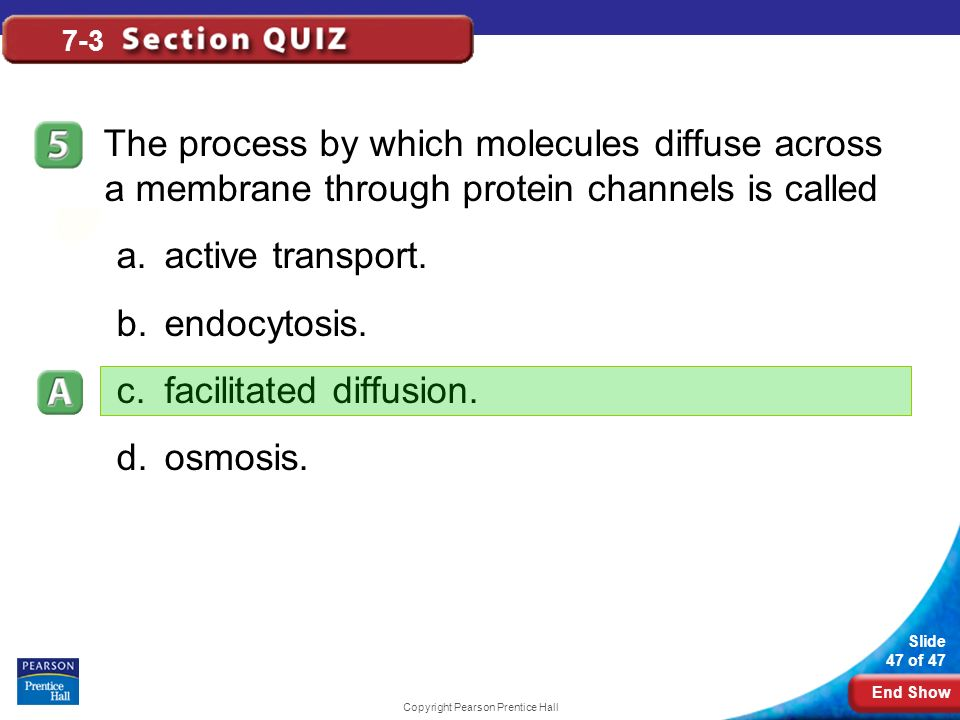 End Show Slide 47 of 47 Copyright Pearson Prentice Hall 7-3 The process by which molecules diffuse across a membrane through protein channels is calle